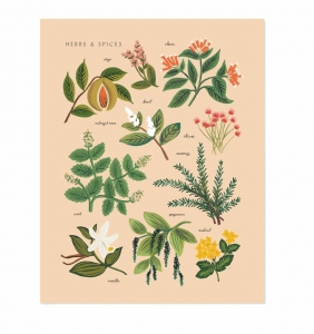 [Rifle Paper Co.] Herbs & Spices Peach 11 x 14""