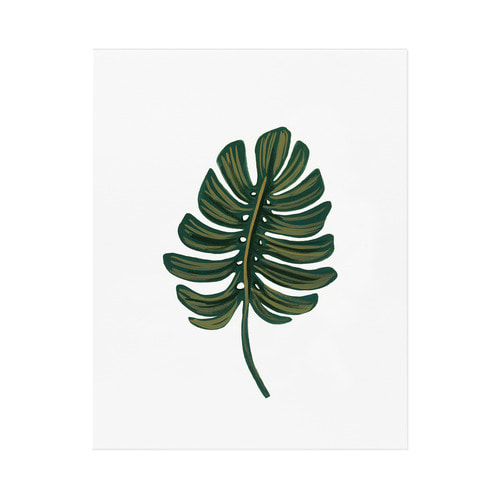 [Rifle Paper Co.] Monstera Leaf Art Print 2 size
