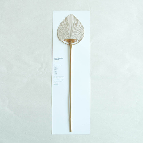 [Studio Word] HANJI FLOWER HAND FAN 45CM - WATER LILY APRICOT